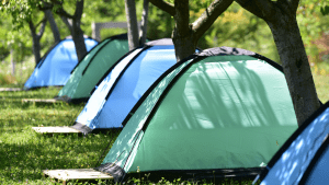 Row of blue and green tents among some trees.